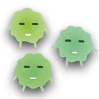 常在菌の種類と役割