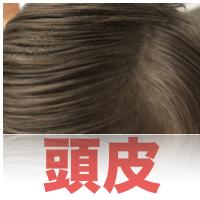 毛孔性苔癬 頭皮